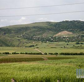 melcek-featured